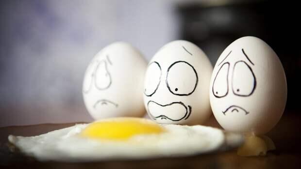 Хватит верить мифам или вся правда об яичных желтках