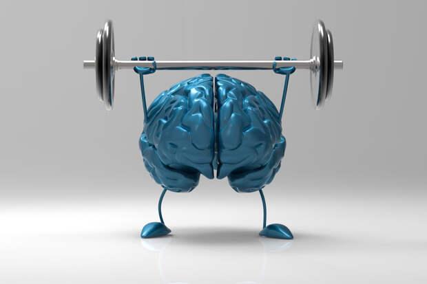 Нейропастичность —как развивать?