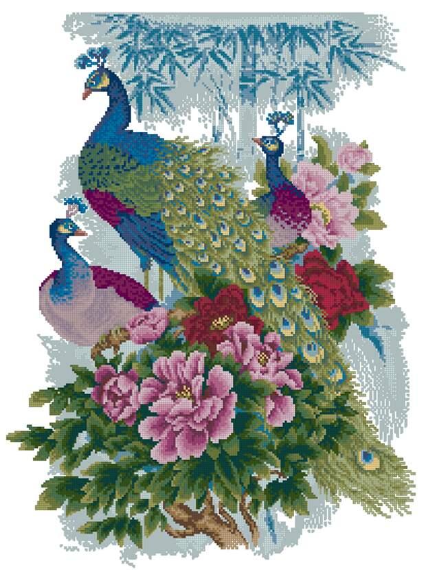 Павлины в цветах