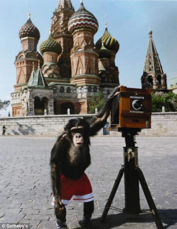Советские фотографии, которые ушли с молотка на аукционе Sotheby's по баснословной цене