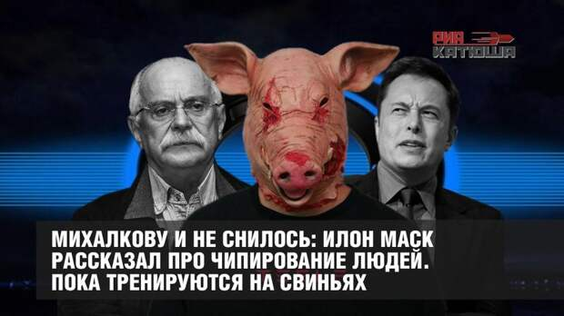Михалкову и не снилось: Илон Маск рассказал про чипирование людей. Пока тренируются на свиньях