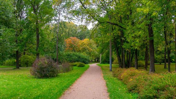 Площадь парка — около 150 гектаров