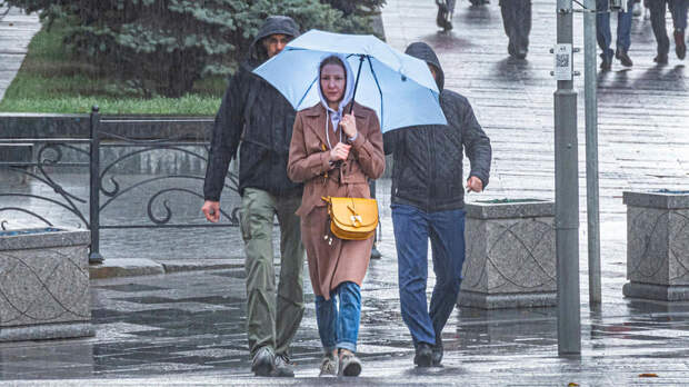 Абсолютный рекорд мая по осадкам побит в Москве за минувшие сутки