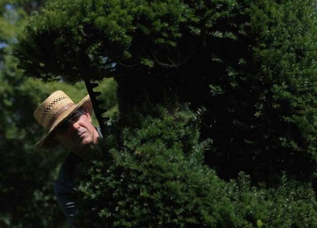 Ladew Topiary Gardens-2013-08-14 (3)