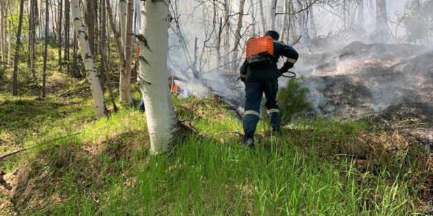 В Приморье отменили особый противопожарный режим