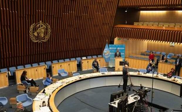 На фото: сессия Всемирной ассамблеи здравоохранения в формате видеоконференции