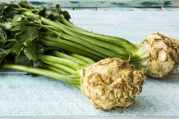 Многоликий сельдерей. Чем полезен овощ и что можно из него приготовить