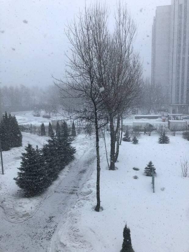 Фотокадр: Псковская улица из окна школы