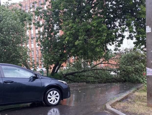 Затопленные улицы и поваленные деревья: как Ижевск пережил дождь