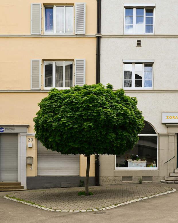 Constantin Schiller | @constantin.schillerZ fc | 1/250 sec. | f/5 28mm | ISO 100 | NIKKOR Z 28mm f/2.8 (SE)