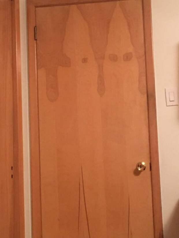 Эта дверь мне кого-то напоминает...