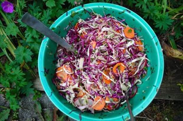 Салат из свежей капусты рецепт из Мексики — Рецепты Джейми Оливера