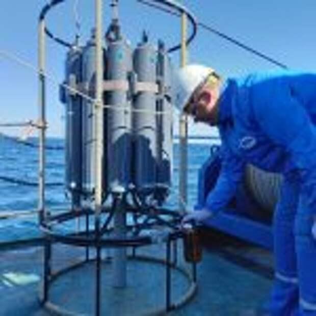 Исследования в Черном море на НИС «Профессор Водяницкий» продолжают ученые ВНИРО