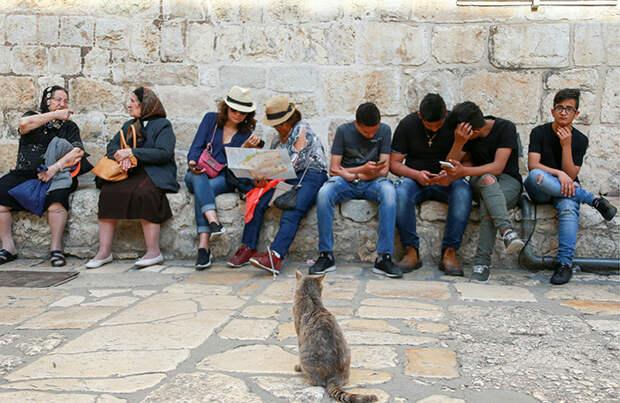 «Людей с отсутствием чувства юмора попрошу воздержаться от обвинений в цинизме». Жители Израиля не теряют присутствия духа на фоне обстрелов