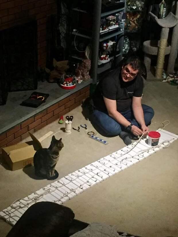 Мужчина решил построить домик своим котам, а получились настоящие особняки