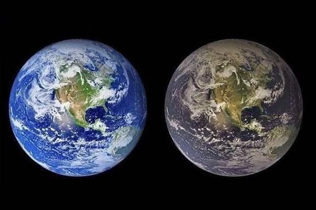 Пятая часть Земли была изменена человеком с 1960 года