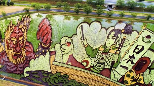 Искусство тамбо — невероятные картины на рисовых полях Японии