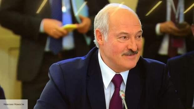 Пегов допустил, что задержание в Минске группы россиян является провокацией Запада