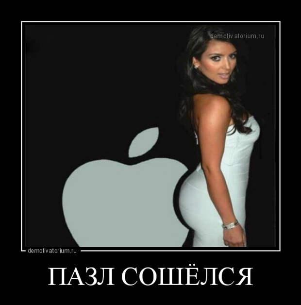5402287_demotivatorium_ru_pazl_soshelsja_113369 (600x608, 56Kb)