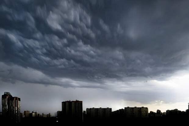 В Гусь-Хрустальном молния поразила женщину прямо на субботнике