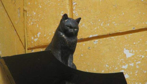 Как кот спас семью в ленинградскую блокаду