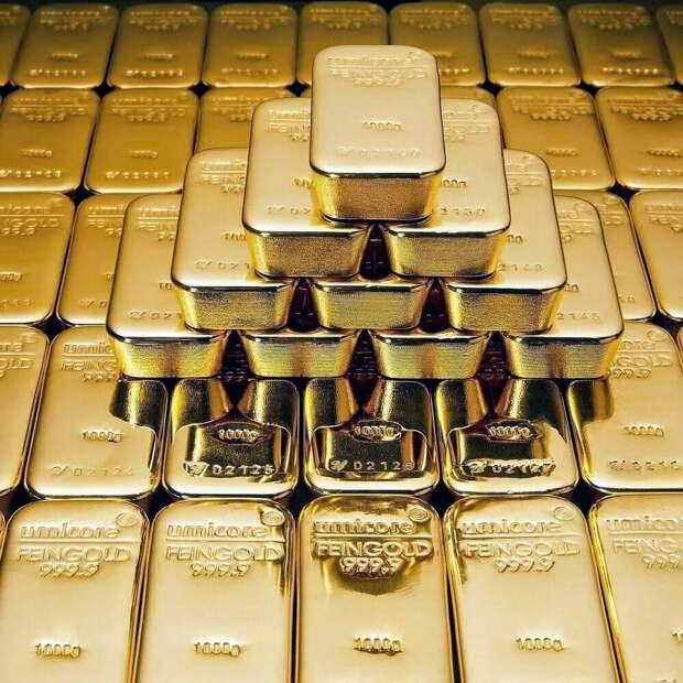 На территории польского дворца нашли золото Гиммлера