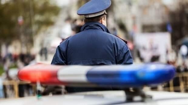 Полиция Крыма начала проверку по факту убийства собаки в Керчи