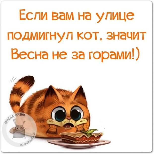 5672049_133951437_5672049_1423770037_frazki18 (604x604, 58Kb)