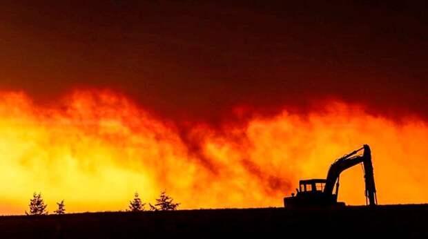 Жертвами лесных пожаров в США стали уже 23 человека