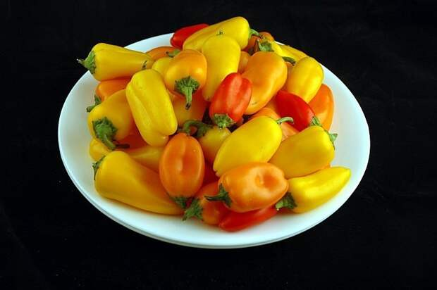 Перцы (740 грамм = 200 калорий):