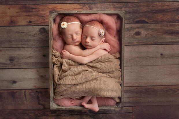 Джиа и Джемма появились на свет 5 января 2017 года  близнецы, дети, фотография
