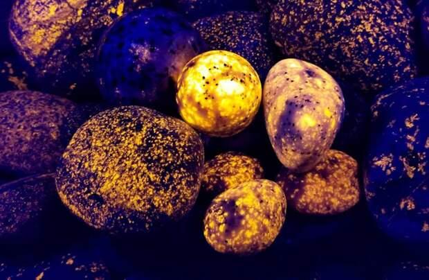 Светящиеся камни, световые мечи и заклинатели пчел: вещи, о которых многие не знали