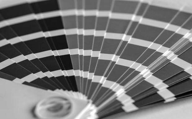 256 оттенков серого: как подбирают краску для кузова