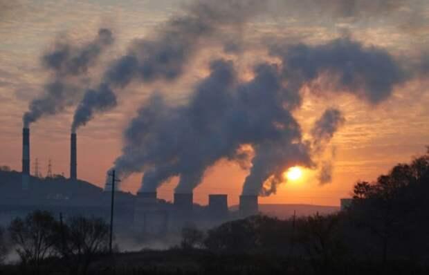 Ученые выяснили, как грязный воздух может повлиять на здоровье почек