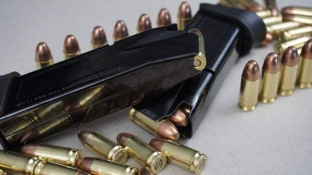 В Госдуме оценили возможность ужесточить ответственность за небрежное хранение оружия