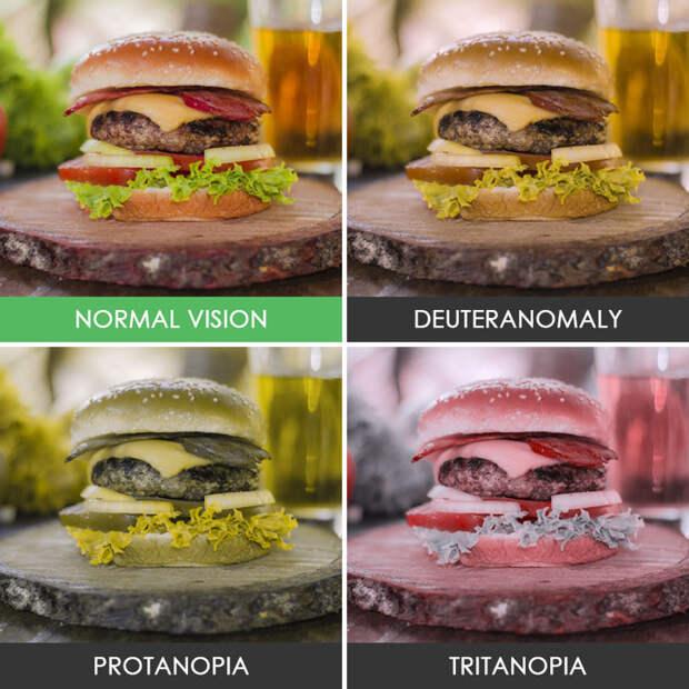 30. Гамбургер  дальтонизм, люди, мир