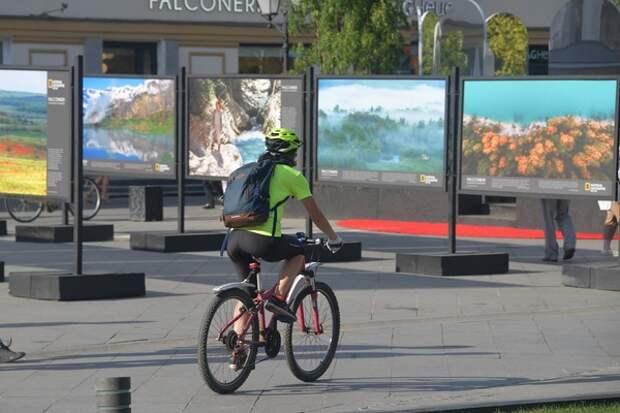 Семилетнего мальчика на велосипеде сбила машина под Волгоградом