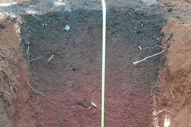 Темные земли неизвестной цивилизации нашли в Амазонии