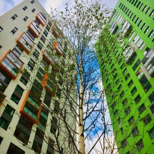 Ландшафтный дизайн по-екатеринбуржски: как изгнать из своих дворов клумбы в шинах и забор из ламината