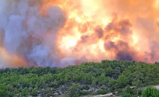 «А где же НАТО?»: турки прокомментировали помощь России в борьбе с пожарами