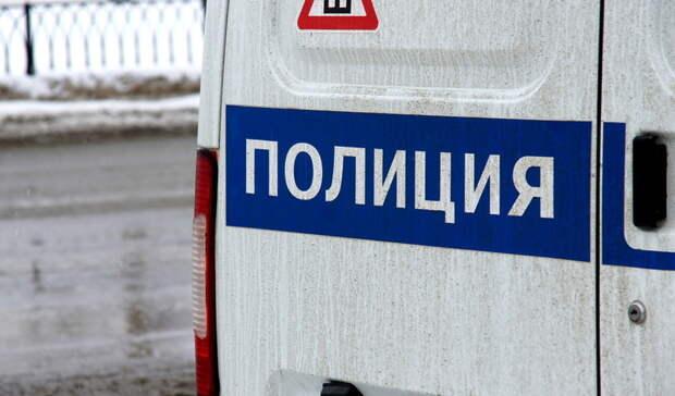 Полиция Оренбурга начала проверку посообщениям омассовом отравлении бездомных собак