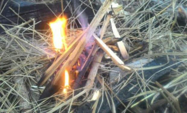 Добываем огонь в сыром лесу