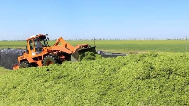 Крымские аграрии начали заготовку кормов на зимний период