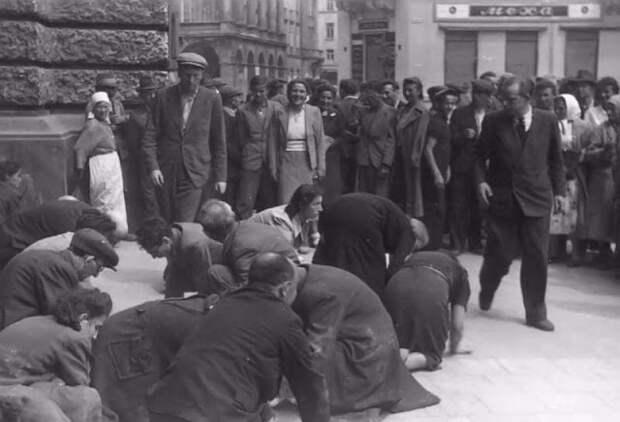 30 шокирующих фотографий львовских погромов 1941 года