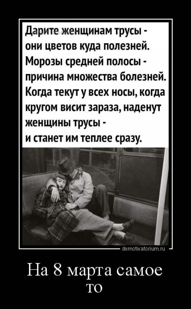 5402287_1615196736_demy2 (428x693, 75Kb)
