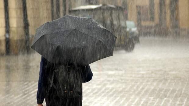 Вильфанд рассказал, в каких регионах России ожидаются сильные дожди