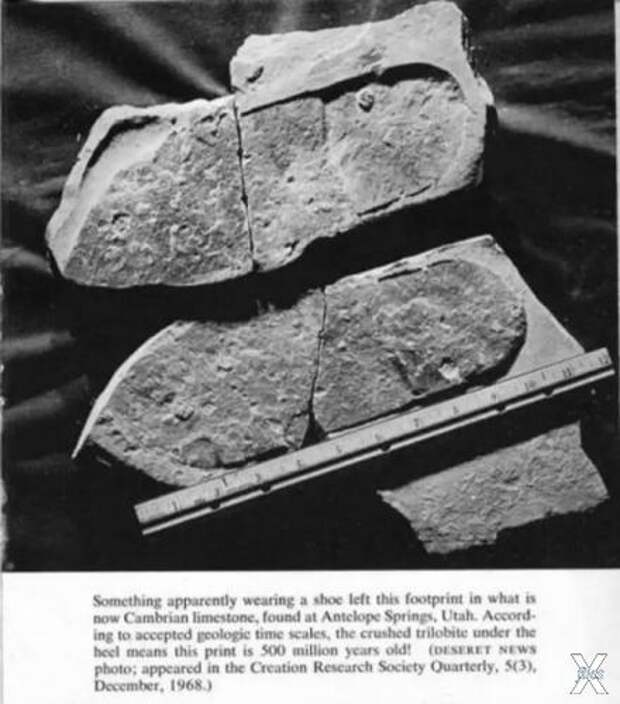"""""""Неуместные артефакты"""" доказывают, что вся """"официальная история человечества"""" - ложь"""
