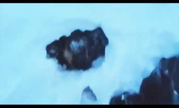 Главный герой видео прогуливался по лесу, как вдруг услышал плач...