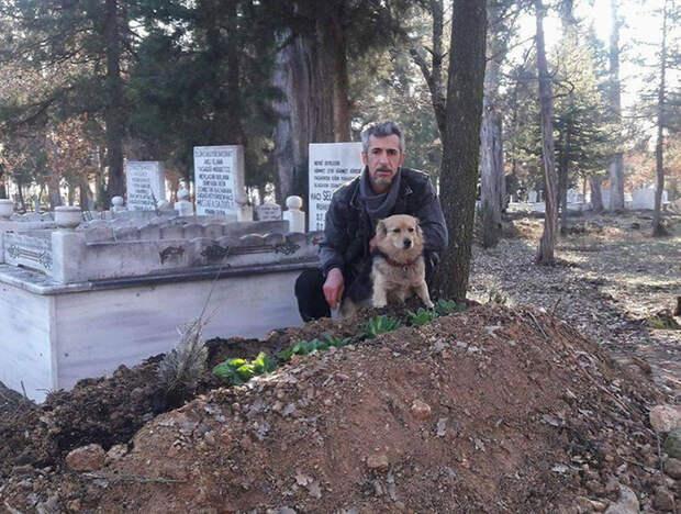Сердце мужчины было разбито, когда он понял, куда каждый день убегает его пес