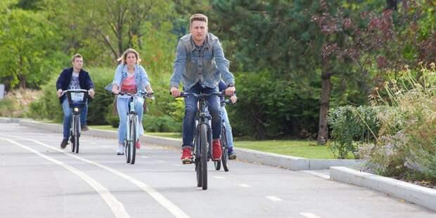 В Строгине появятся новые велодорожки и пункты проката велосипедов